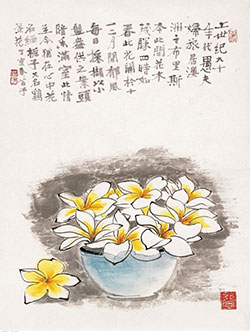 缅栀子(鸡蛋花)