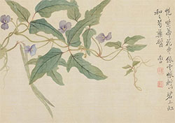 艳艳紫蒂花,垂垂绿云帐